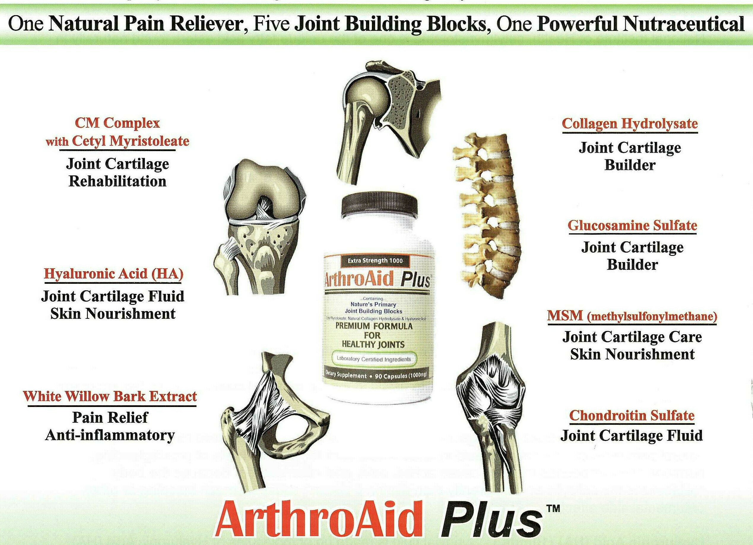ARTHROAIDPLUS